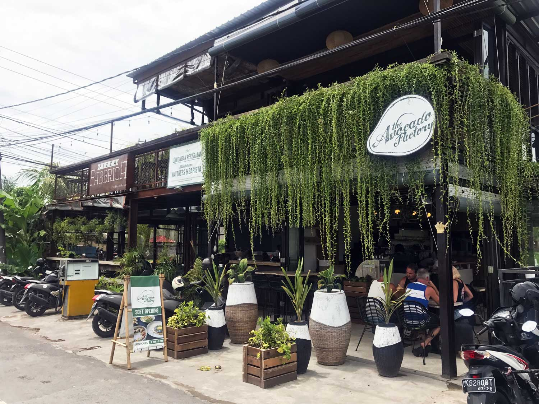 The Avocado Factory - Canggu Bali - Travel Blog - Screw Them All
