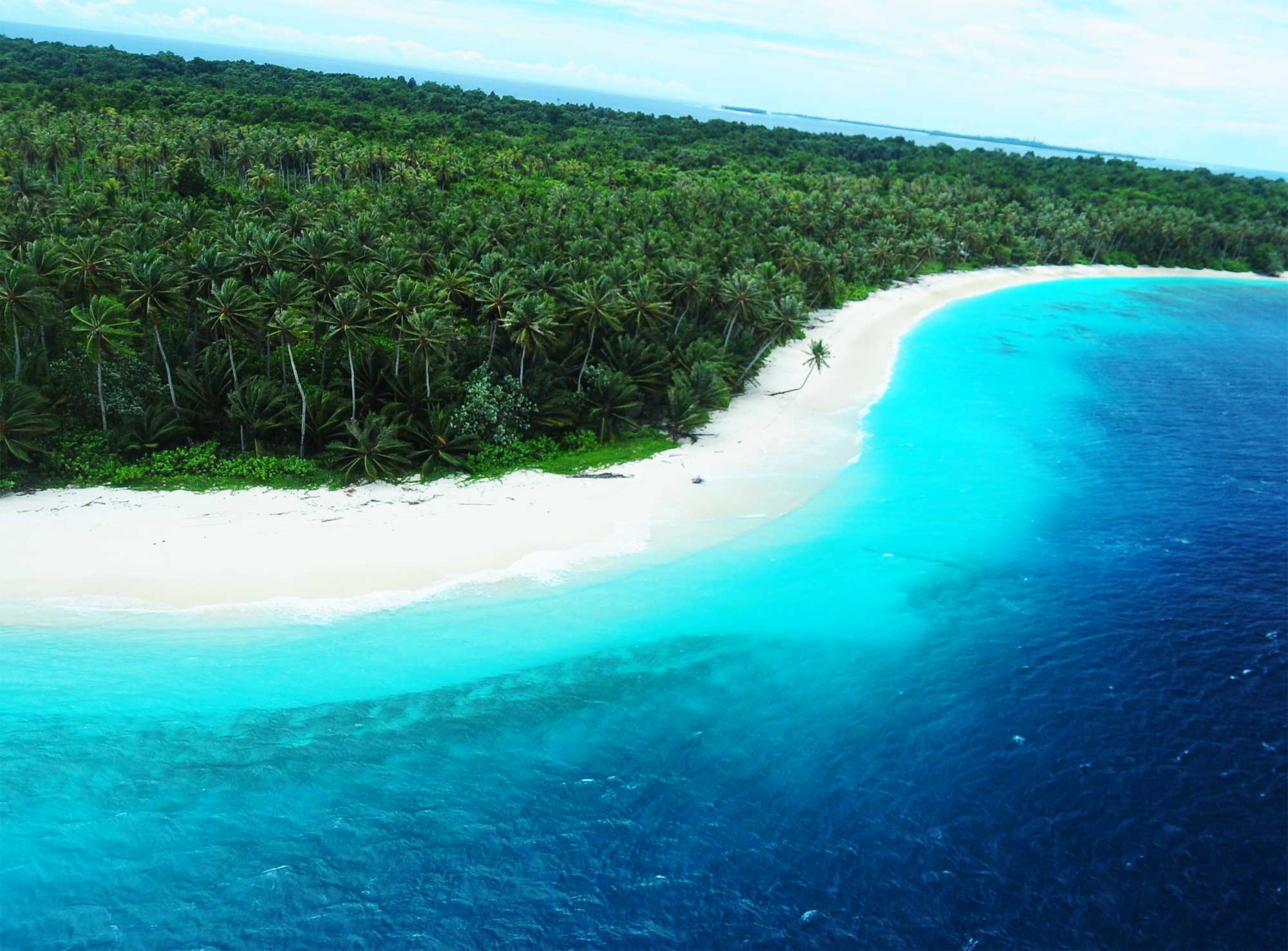 Wavepark Mentawai Islands - Surfing beach - Screw Them All - Blog