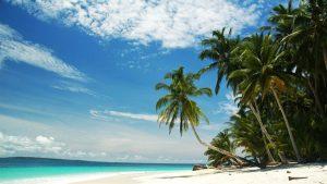 Wavepark Mentawai Indonesia - Screw Them All - Blog