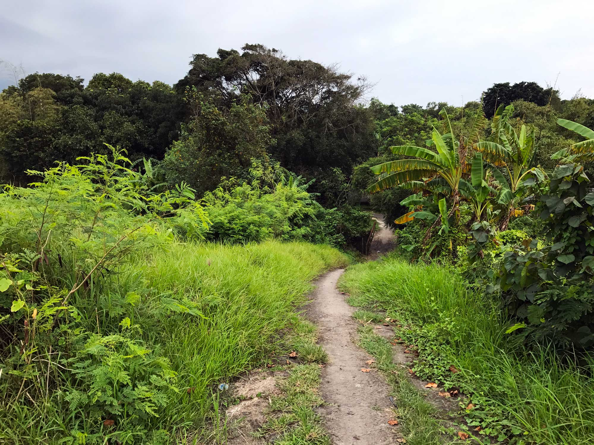 Off the path - Travel blog Bali - Screw Them All