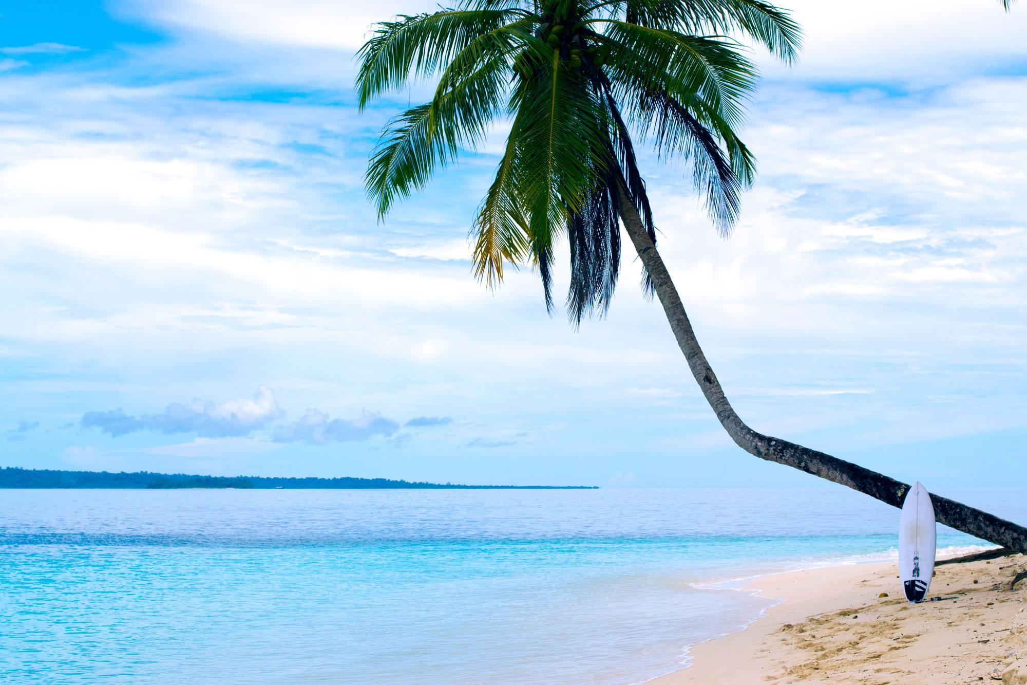 The Big Fish - Wave park Mentawai Islands